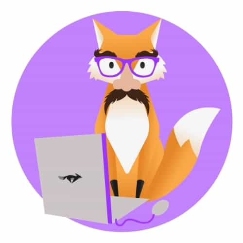 Orange fox with laptop and funny glasses on kitblogs.com