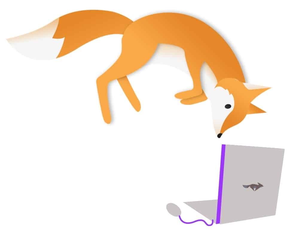 Orange fox jumping onto laptop (kitblogs.com)